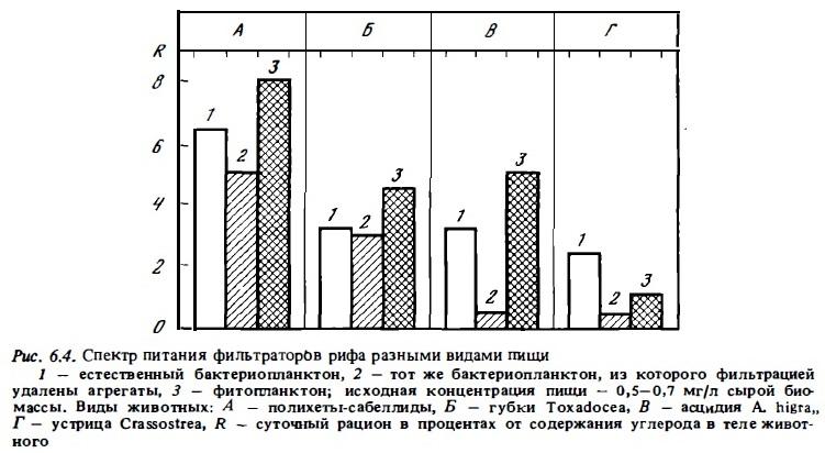 Рис.6.4. Питание фильтратов рифа