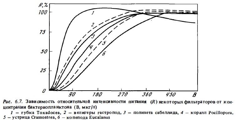 Рис.6.7. Интенсивность питания фильтраторов
