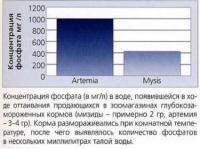 Содержание фосфатов в кормах после разморозки